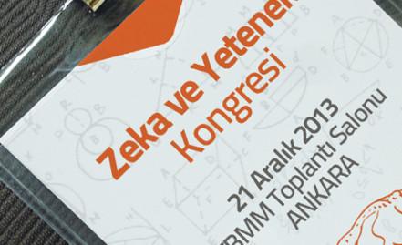 Zeka ve Yetenek Kongresi, 21 Aralıkta Ankara'da toplanıyor.